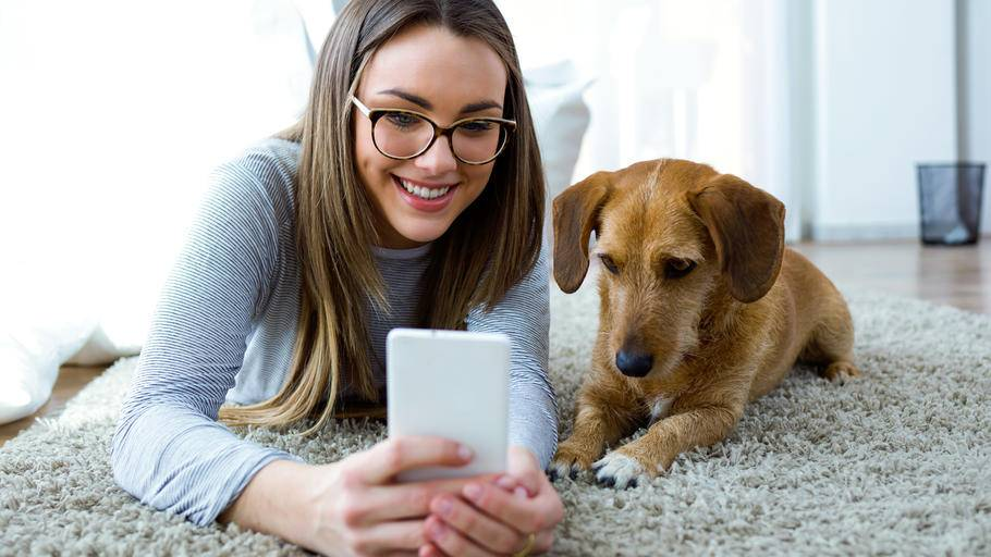 Google Lens: riconoscere cani e gatti, semplice come scattare un foto!